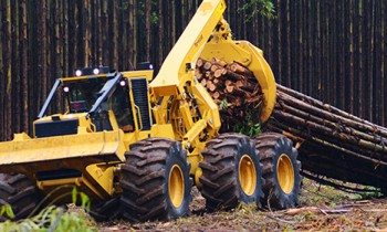 CroppedImage350210-tigercat-Forestry.jpg